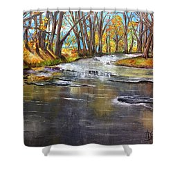Cold Day At The Creek Shower Curtain by Annamarie Sidella-Felts