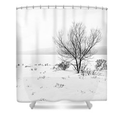 Cold Loneliness Shower Curtain by Hayato Matsumoto