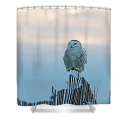 Shower Curtain featuring the photograph Cold Morning Light by Stephen Flint