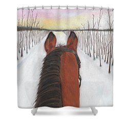 Cold Ride Shower Curtain