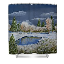 Cold Sky 1 Shower Curtain