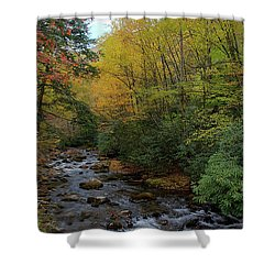Cold Stream Shower Curtain