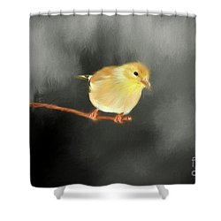 Shower Curtain featuring the photograph Cold Winters Day by Darren Fisher