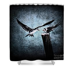 Colder Confrontations Shower Curtain by Andrew Paranavitana