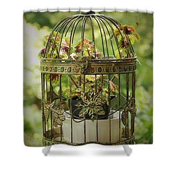 Coleus In Vintage Birdcage Shower Curtain