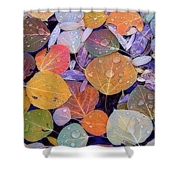 Collage Of Aspen Leaves At Mcgee Creek In The Eastern Sierras Shower Curtain