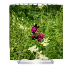 Collecting Honey  Shower Curtain