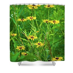 Shower Curtain featuring the photograph Collection In The Clearing by Bill Pevlor