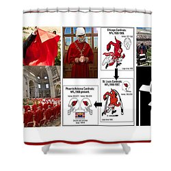 College Of Cardinals Shower Curtain