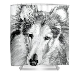 Collie Rough Lover Shower Curtain