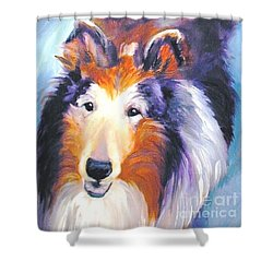 Collie Sable Rough 2 Shower Curtain