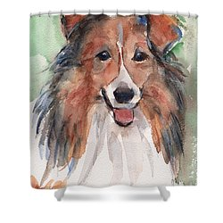 Collie, Shetland Sheepdog Shower Curtain