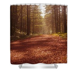Colligan Autumn 2 Shower Curtain