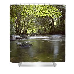 Colligan River 2 Shower Curtain