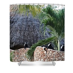 Colobus Monkey Resting On A Wall Shower Curtain