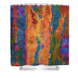 Color Abstraction Lxvi Shower Curtain