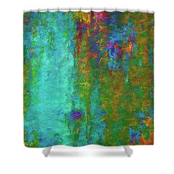 Color Abstraction Lxvii Shower Curtain