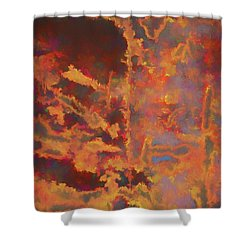 Color Abstraction Lxxi Shower Curtain