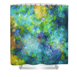Color Abstraction Xliv Shower Curtain by David Gordon