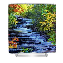 Color Alley Shower Curtain