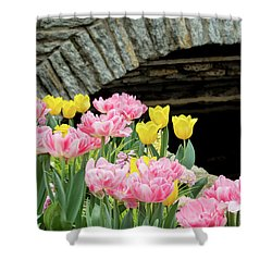 Color Along The Pond Shower Curtain