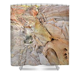 Color At Valley Of Fire State Park Shower Curtain