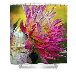 Color Burst Shower Curtain by Patricia Strand