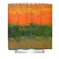 Color Collage Four Shower Curtain by Michelle Calkins