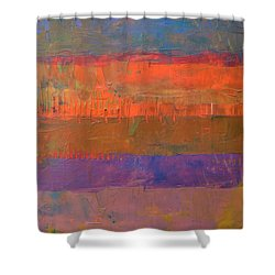 Color Collage Two Shower Curtain by Michelle Calkins