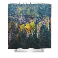 Color In A Snowstorm Shower Curtain