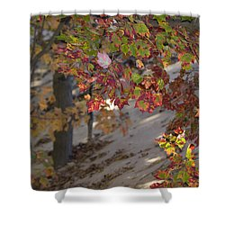 Color In The Dunes Shower Curtain by Tara Lynn