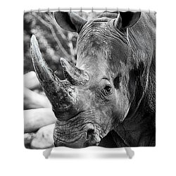 Shower Curtain featuring the photograph Color Me Rhino by John Haldane