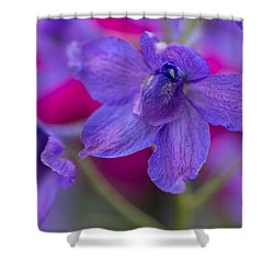 Shower Curtain featuring the photograph Color Me Spring by Julie Andel