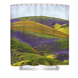 Shower Curtain featuring the photograph Color Mountain I by Peter Tellone