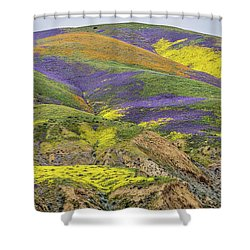 Shower Curtain featuring the photograph Color Mountain II by Peter Tellone