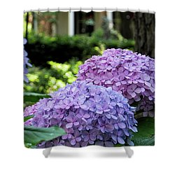 Color Of Summer Shower Curtain