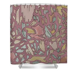 Color Pattern 4 Shower Curtain