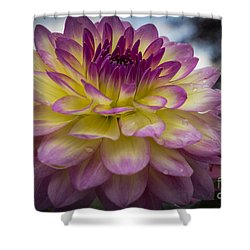 Color Starburst Shower Curtain