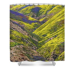 Shower Curtain featuring the photograph Color Valley by Peter Tellone