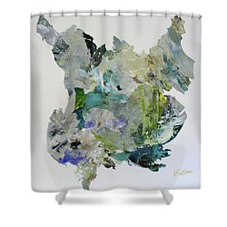 Color Whirl Shower Curtain