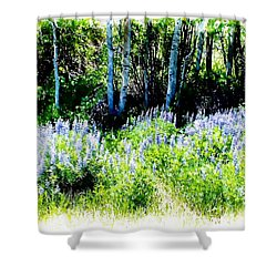 Colorado Apens And Flowers Shower Curtain