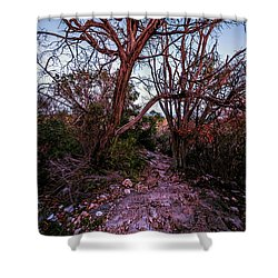 Colorado Bend State Park Gorman Falls Trail #3 Shower Curtain