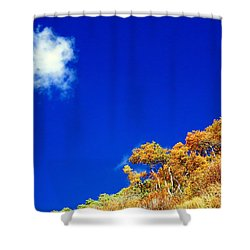 Shower Curtain featuring the photograph Colorado Blue by Karen Shackles
