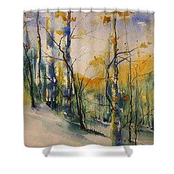 Colorado Bright Morning 1 Shower Curtain
