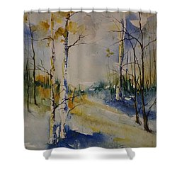 Colorado Bright Morning 2 Shower Curtain