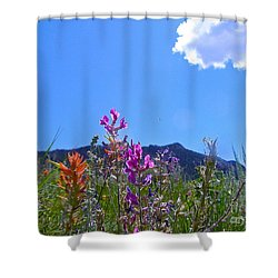 Colorado Colors Shower Curtain by Alan Johnson