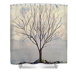Colorado Cottonwood Shower Curtain