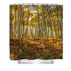 Colorado Gold Shower Curtain