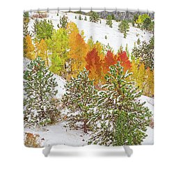 Colorado Is Stunningly Beautiful. Here's One Example Among Countless Others.  Shower Curtain