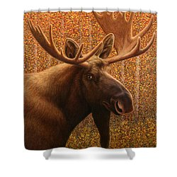 Colorado Moose Shower Curtain by James W Johnson